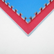 Tatami Economic 100 x 100 x 2 cm modré-červené detail 1